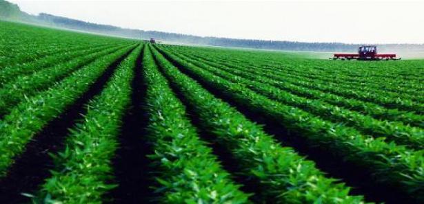 Yabancı Gerçek Kişilerin Tarım Arazisi Edinimleri