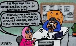 Emlakçı Karikatürleri