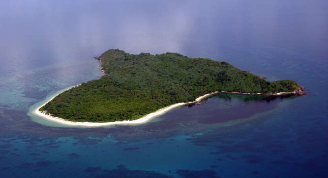 DAO ISLAND