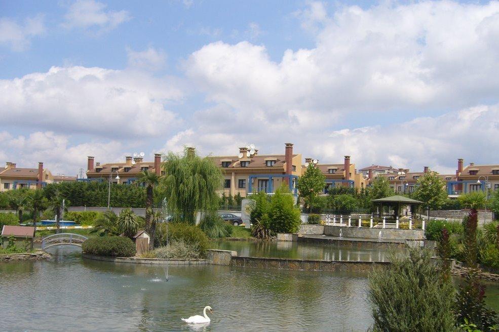 aqua manors