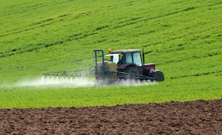 Türkiye Afrika'da Arazi Kiraladı