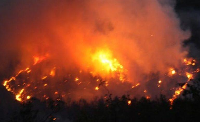 Kaliforniya'da 80 ev kül oldu