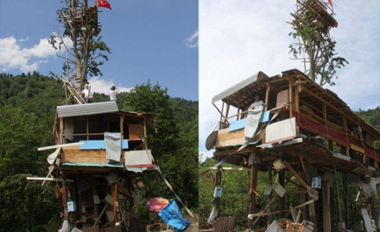 Rizeliden ağacın tepesine arı evi