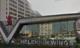 Helenium Wings