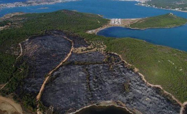 Haluk Levent'ten Cennet Koyu İçin Fidan Kampanyası