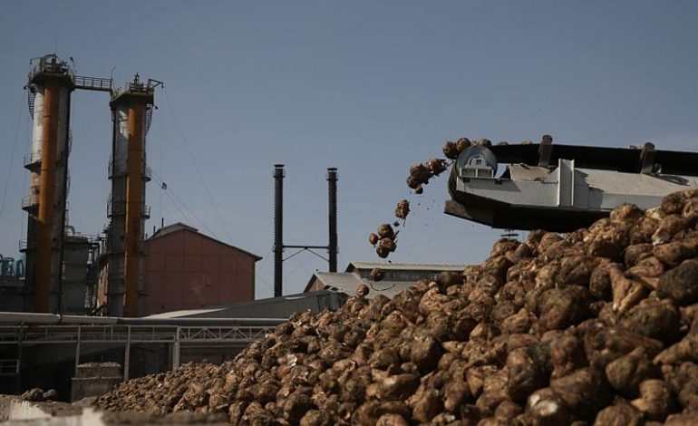 Afyon, Burdur ve Elbistan şeker fabrikalarının özelleştirilmesi ihaleleri yapıldı