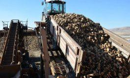 Bor Şeker Fabrikası İnşaat Şirketine Satılıyor