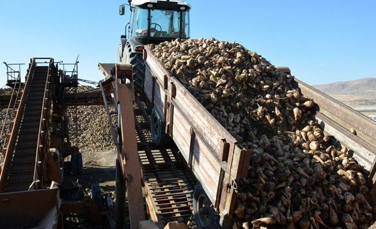 Bor'dan Sonra Kırşehir Şeker Fabrikası Da Satıldı