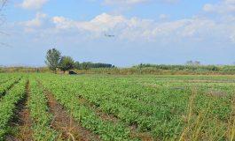 Hazineye ait tarım arazilerinde yeni düzenleme