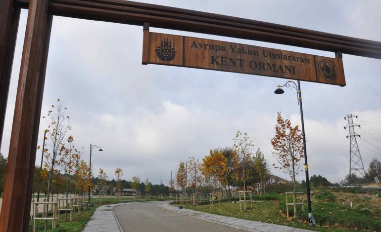 """""""Uluslararası Kent Ormanı"""" Eyüpsultan'da açılıyor"""