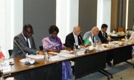Konutta Afrika Fırsat: Zambiya'dan 1.3 Milyon Konut Teklifi