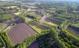 2B arazilerinde 748 bin hak sahibi tapusuna kavuştu