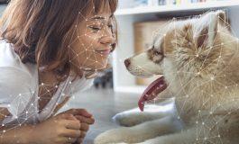Yapay Zeka Teknolojisi Evleri Akıllandırıyor