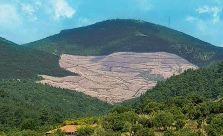 TEMA Vakfı'ndan çağrı: Çanakkale Kirazlı'da ÇED'e aykırı davranan işletmeyi durdurun