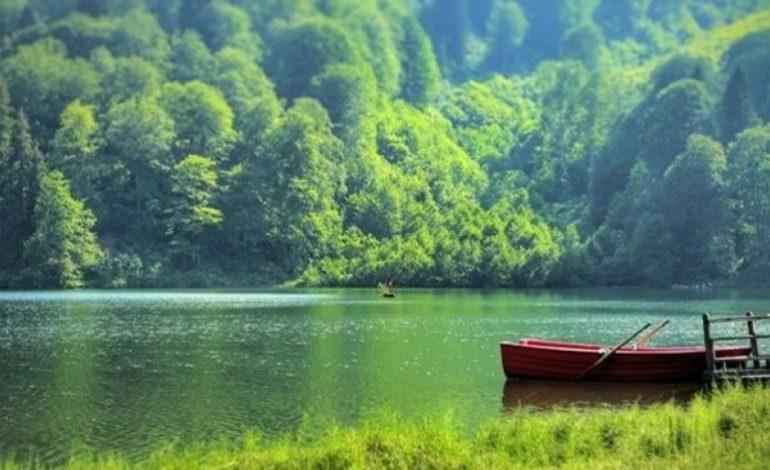 Doğa Koruma ve Milli Parklar Genel Müdürlüğü Kapatılmasın!