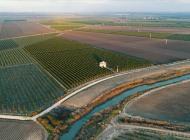 Tarım arazileri yatırım aracı oluyor