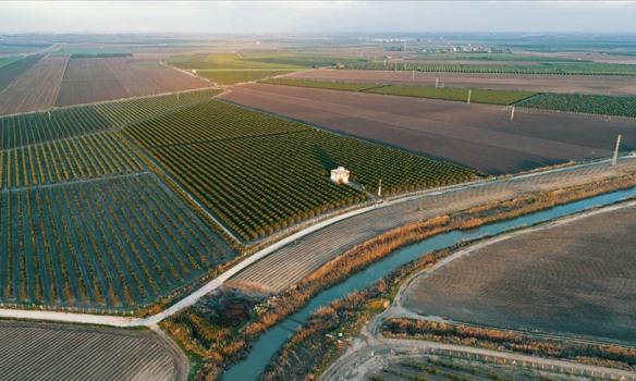 Milli Emlak Genel Tebliğinde Tarım Arazilerinin Satışı ve Kullanımda Değişiklik Yapıldı