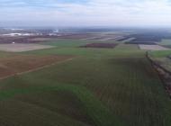 TEMA Vakfı, 893 hektar tarım arazisinin tarım dışına çıkarılmasına tepki gösterdi